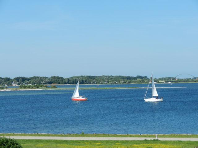 Seegelboote Blick aus der Ferienwohnung Piccolo Seiss am Südstrand von Fehmarn
